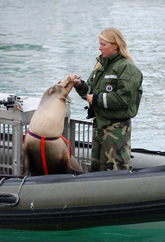Photo by U.S. Navy