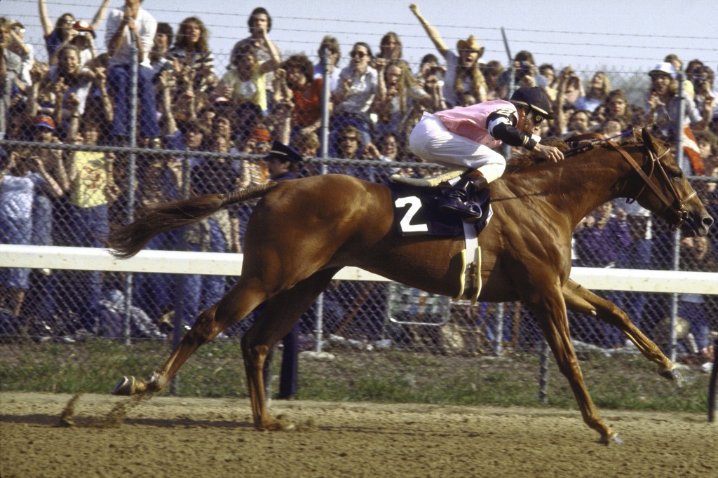 Jockey Steve Cauthen rode Affirmed to a 1978 Kentucky Derby victory. Affirmed is the last racehorse to win the Triple Crown. Photo by Jerry Cooke/Sports Illustrated/Getty Images