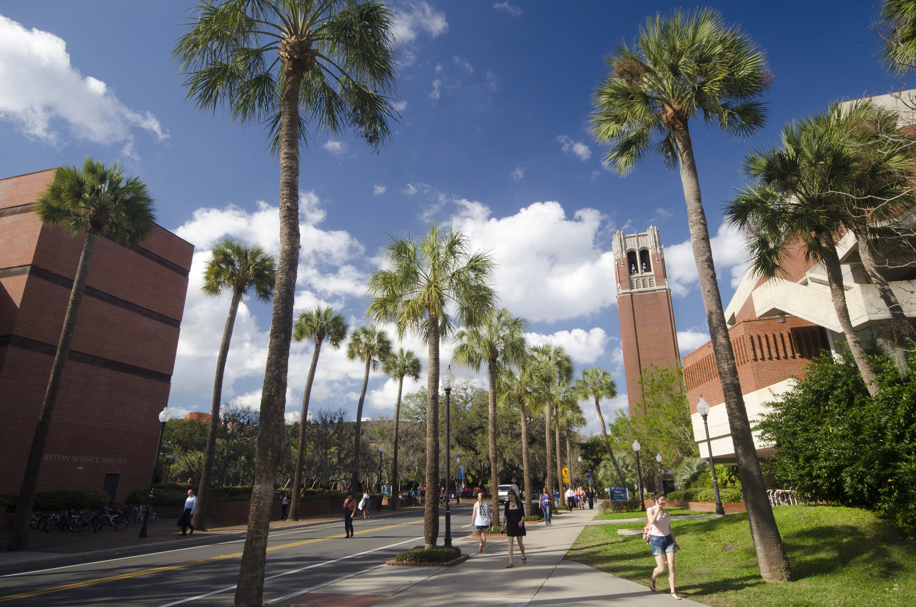 Students wander the University of Florida campus. Photo by University of Florida