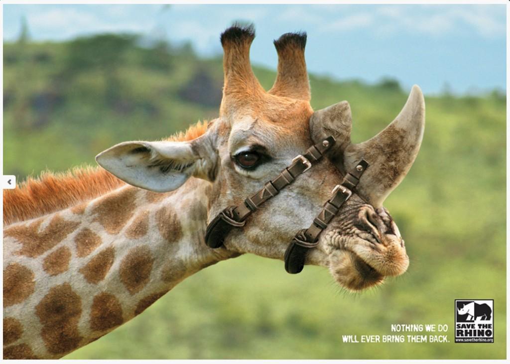 Save the Rhino campaign