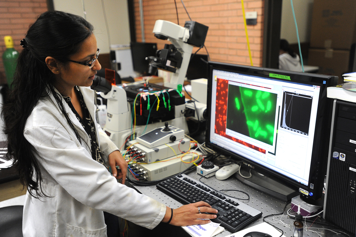 Graduate student Jamini Jangir, 27, points out Shewanella bacteria cells on a computer screen at the University of Southern California. Photograph by Kent Treptow for PBSNewsHour