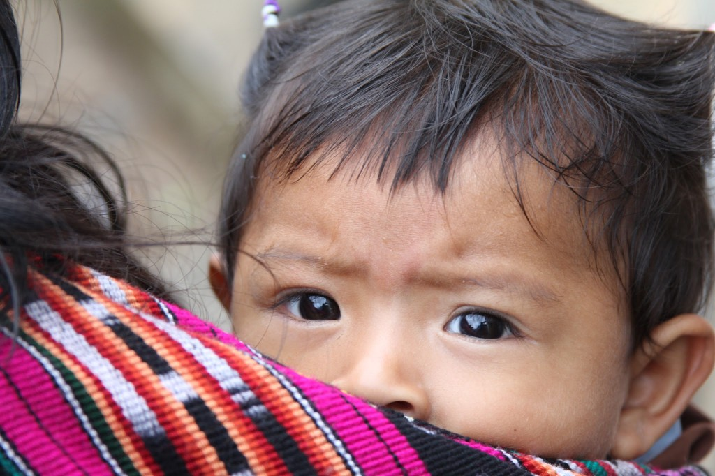 Without intervention 50-70 percent of Guatemalan children will continue to grow up malnourished, costing their families and society in the long run. Photo by Hari Sreenivasan