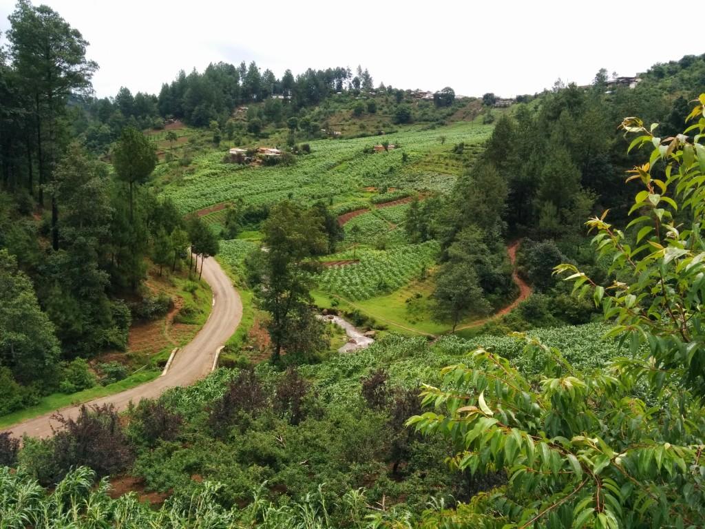 The verdant western highlands of Guatemala. Photo by Hari Sreenivasan