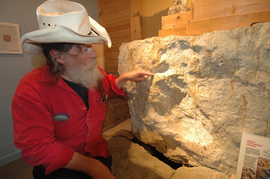Bob Bakker, curator of paleontology for the Morrison Natural History Museum, points out the adult Stegosaurus tracks he found near Morrison, Colorado. They are now on display at the museum alongside the first baby Stegosaurus tracks. Photo by Rebecca Jacobson