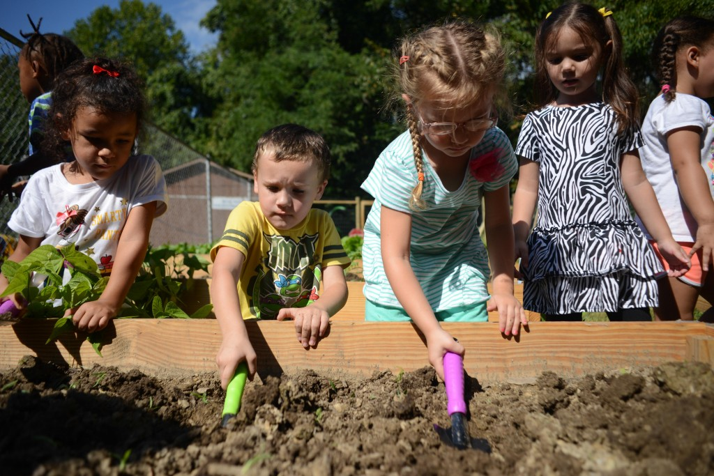 Three- and 4-year-olds at the Northern Panhandle Head Start learn gardening techniques at the new garden next to the school playground. Photo by Ariel Min/PBS NewsHour