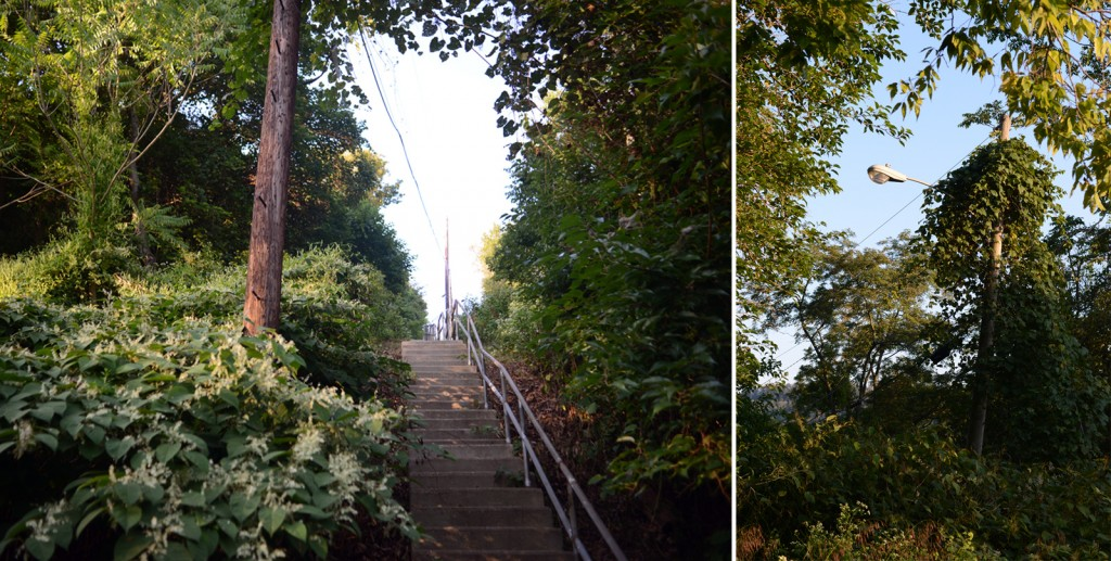 Left: A concrete stairway in East Wheeling leads to the site of the former Lincoln Homes public housing development on Vineyard Hill. Right: Lampposts still line the overgrown street that ran through the neighborhood. Photos by Ariel Min/PBS NewsHour