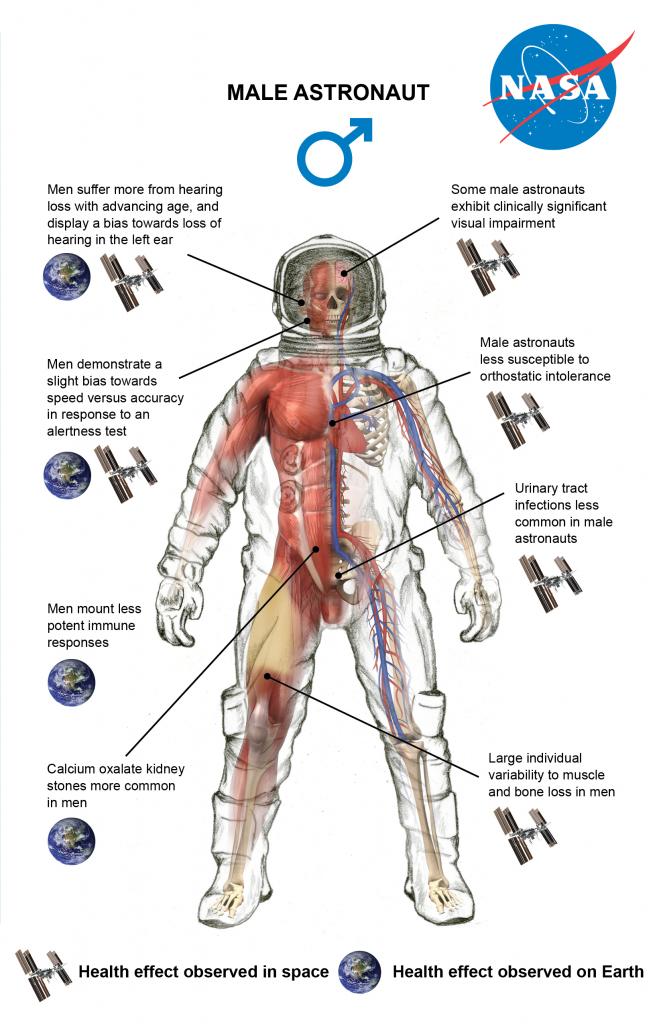 male-astronaut