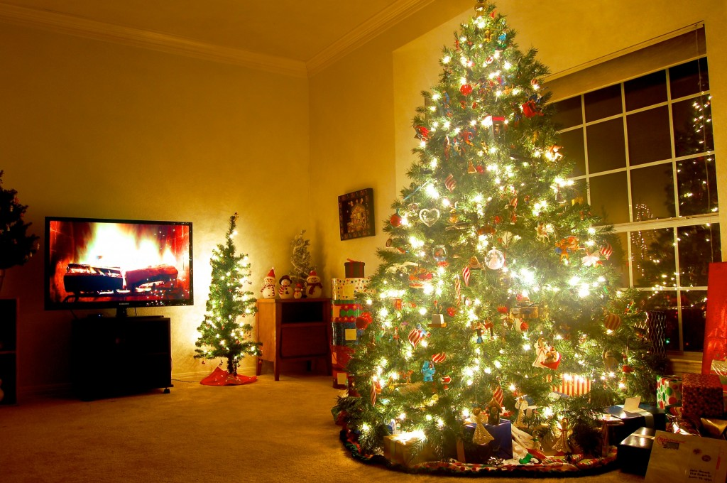 GIF: Christmas Tree To Blazing Inferno In Less Than A Minute | PBS NewsHour