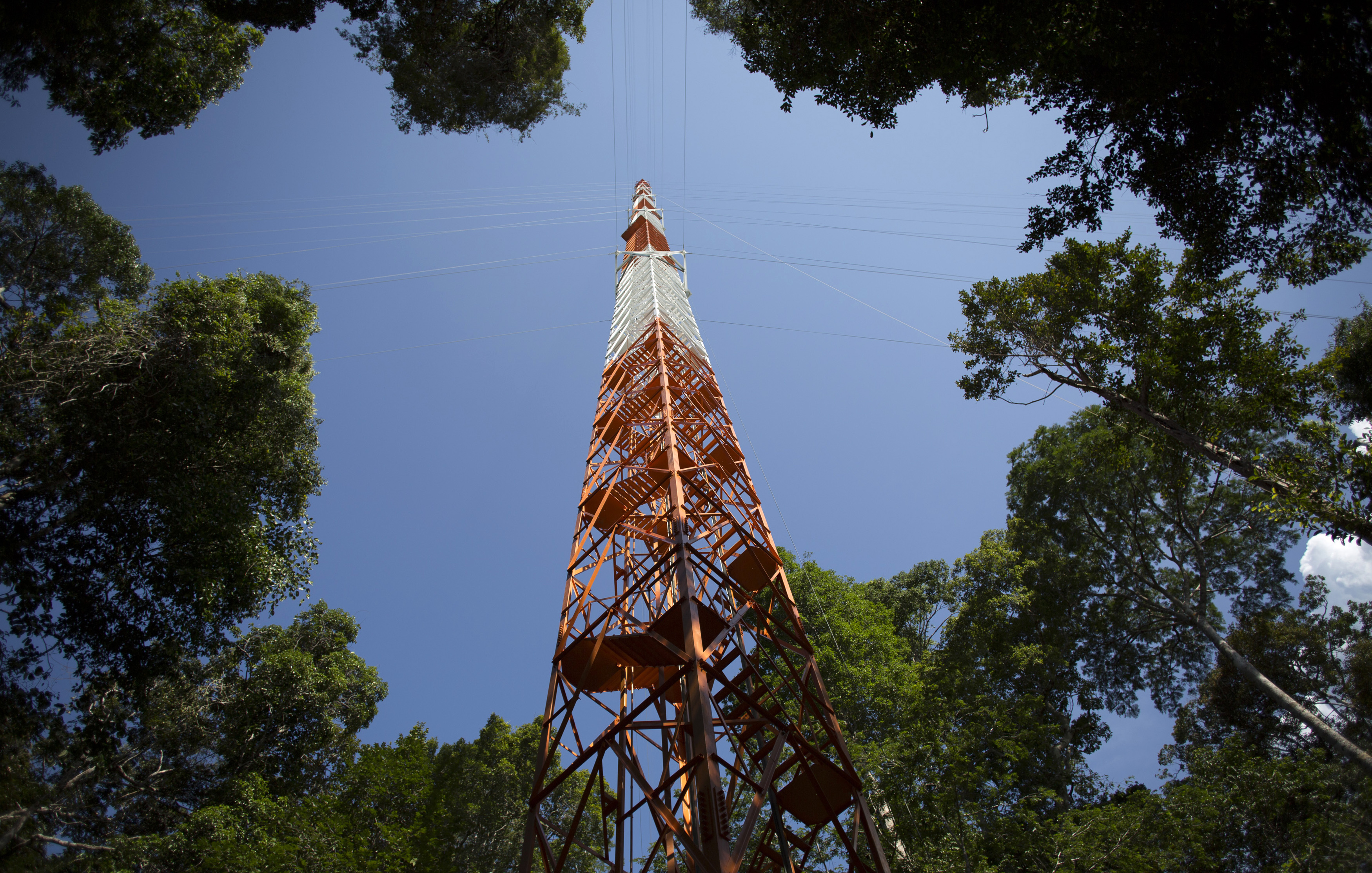 The Amazon Tall Tower Observatory (ATTO) is pictured in Sao Sebastiao do Uatuma in the middle of the Amazon forest in Amazonas state January 8, 2015. Photo by Bruno Kelly/Reuters