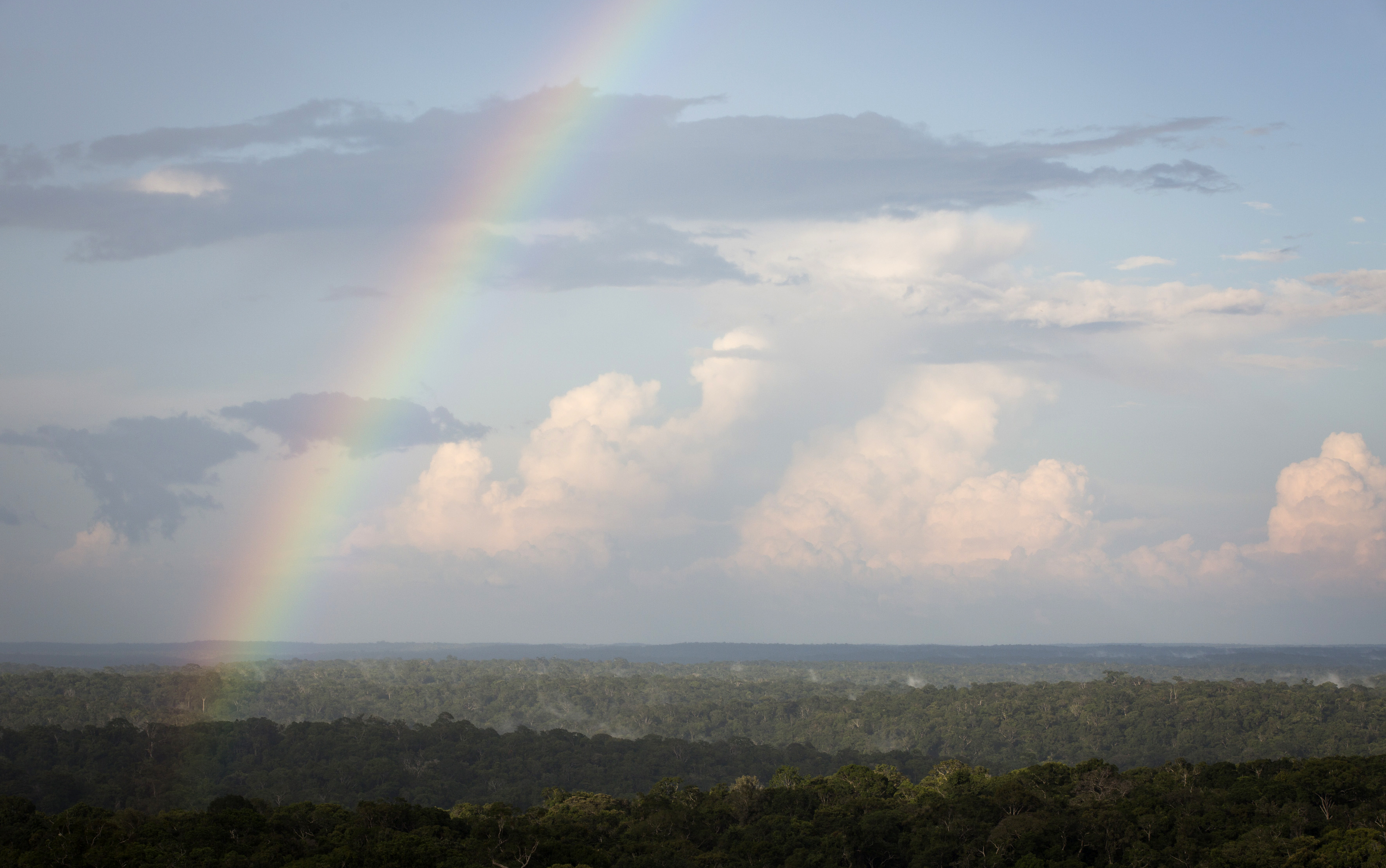 A rainbow is seen from the Amazon Tall Tower Observatory (ATTO) in Sao Sebastiao do Uatuma in the middle of the Amazon forest in Amazonas state January 8, 2015. Photo by Bruno Kelly/Reuters