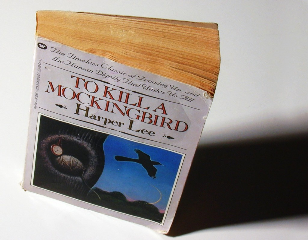 """To Kill A Mockingbird"" by Harper Lee. Photo by Nate Parsons/The Washington Post/Getty Images"