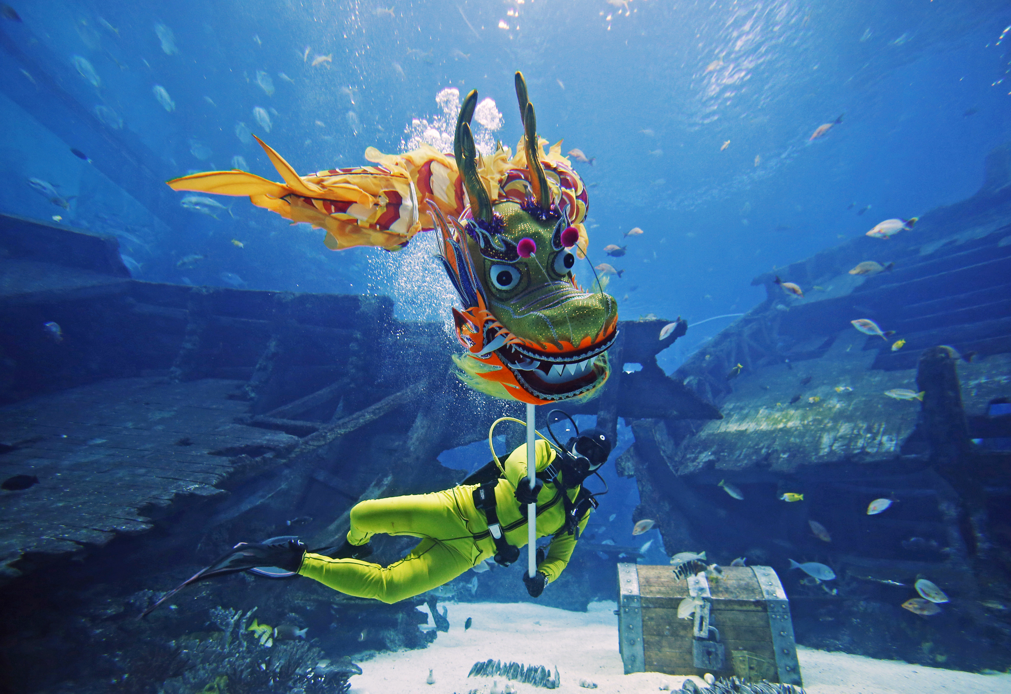 A diver performs a dragon dance at the Shipwreck Habitat of the S.E.A. Aquarium as part of the festive Chinese New Year celebrations in Sentosa, Singapore February 14, 2015. Photo by Edgar Su/REUTERS.