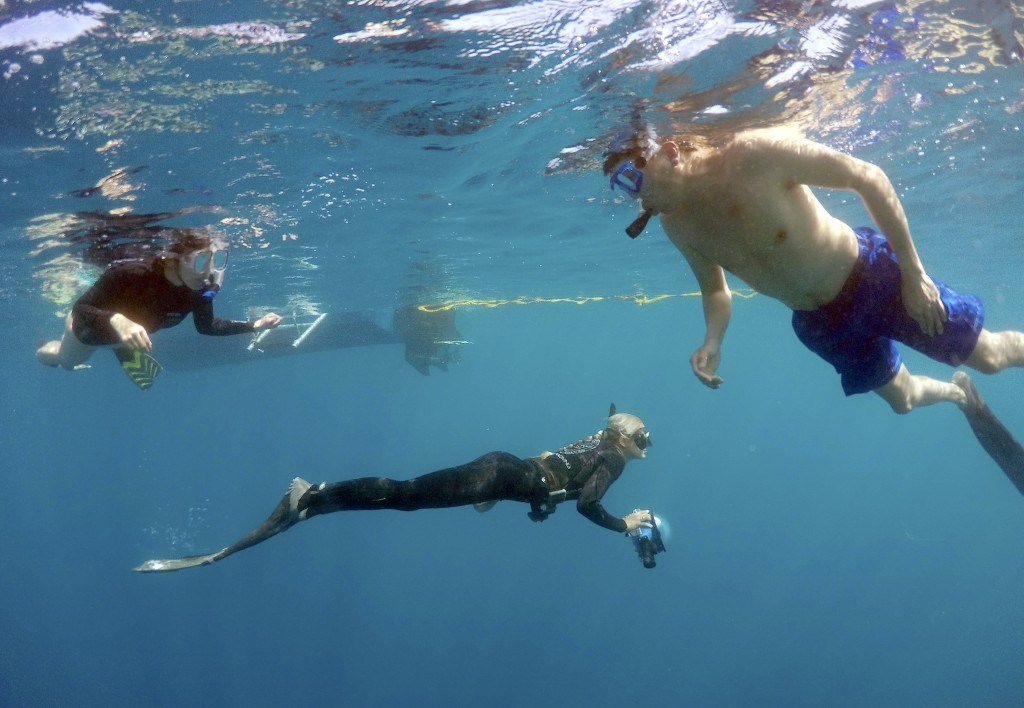 Shark ecologist Ocean Ramsey, center, guides tourists on a cageless shark dive tour in Haleiwa, Hawaii February 16, 2015. Photo by Hugh Gentry/Reuters