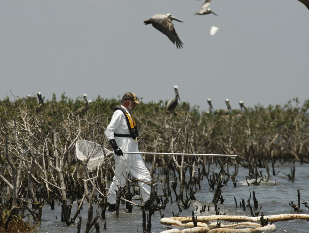 An Unsuccessful Capture Attempt A Louisiana Fish and Wildlife officer walks near an oil-soaked boom as he tries unsuccessfully to corral on oil-soaked pelican in Barataria Bay, May 23, 2010. (AP Photo/Gerald Herbert)
