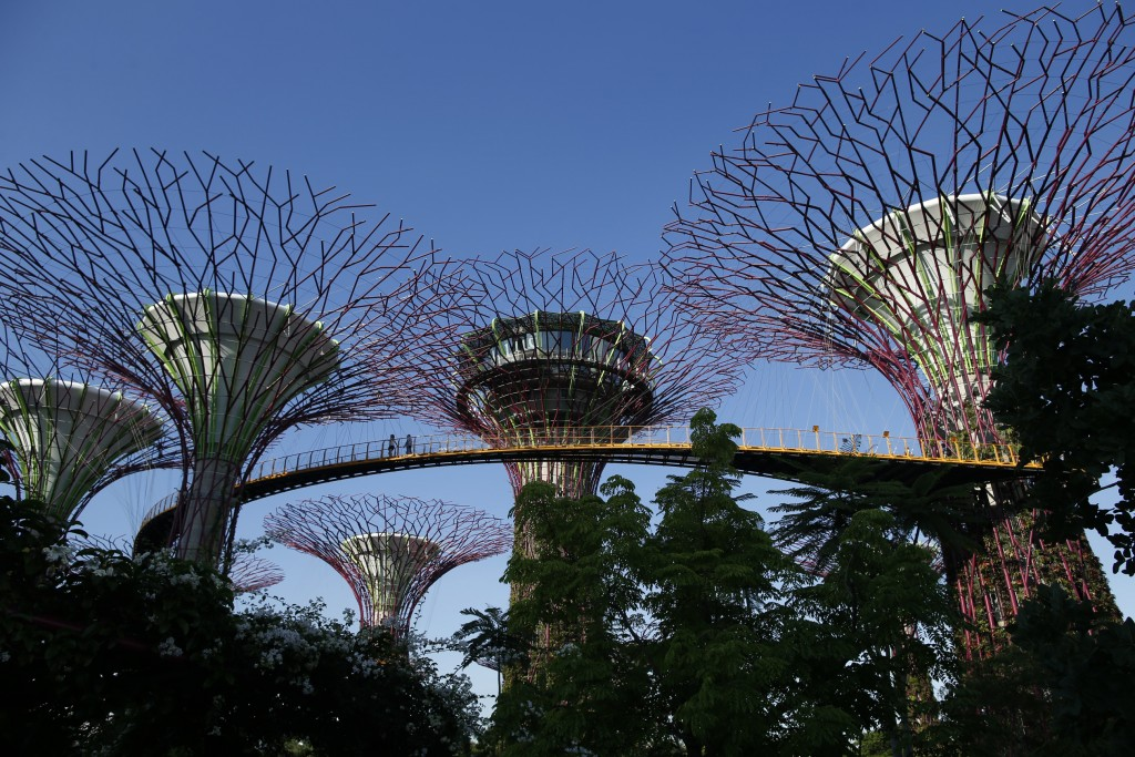 Visitors walk along an elevated walkway connecting giant concrete tree-like structures called Supertrees at Gardens by the Bay in Singapore. Photo by Edgar Su/Reuters