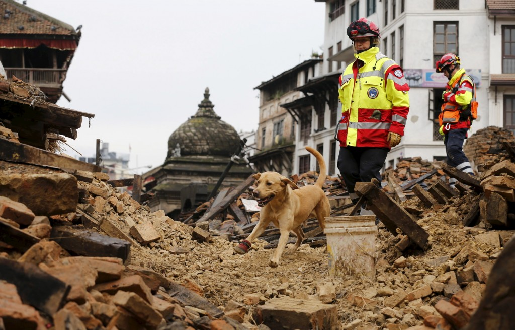 A rescue dog belonging to the group International Search and Rescue of Germany searches the rubble following Saturday's earthquake. Photo by Wolfgang Rattay/Reuters