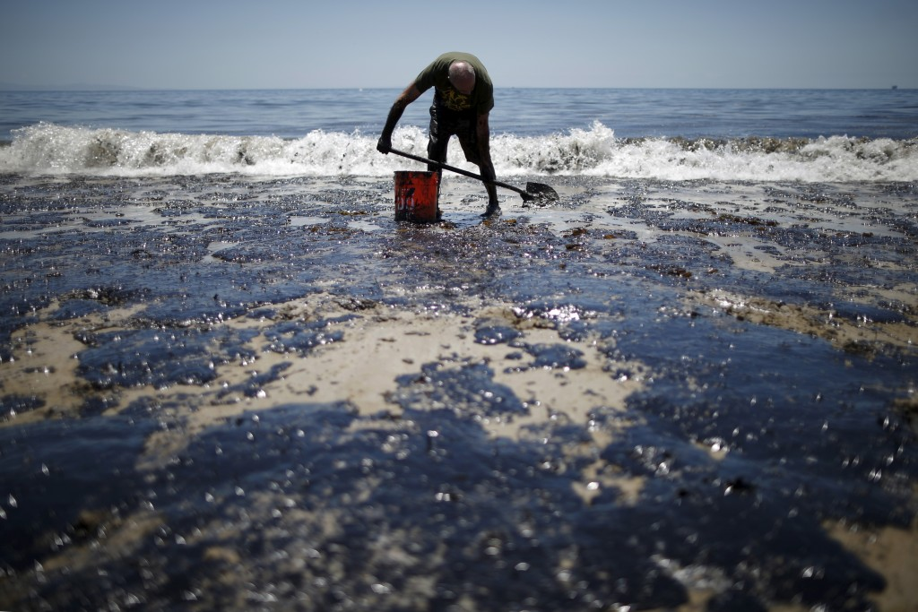 Volunteer William McConnaughey, 56, who drove from San Diego to help shovel oil off the beach, stands in an oil slick in bare feet along the coast of Refugio State Beach in Goleta, California, United States, May 20, 2015. Photo by Lucy Nicholson/Reuters