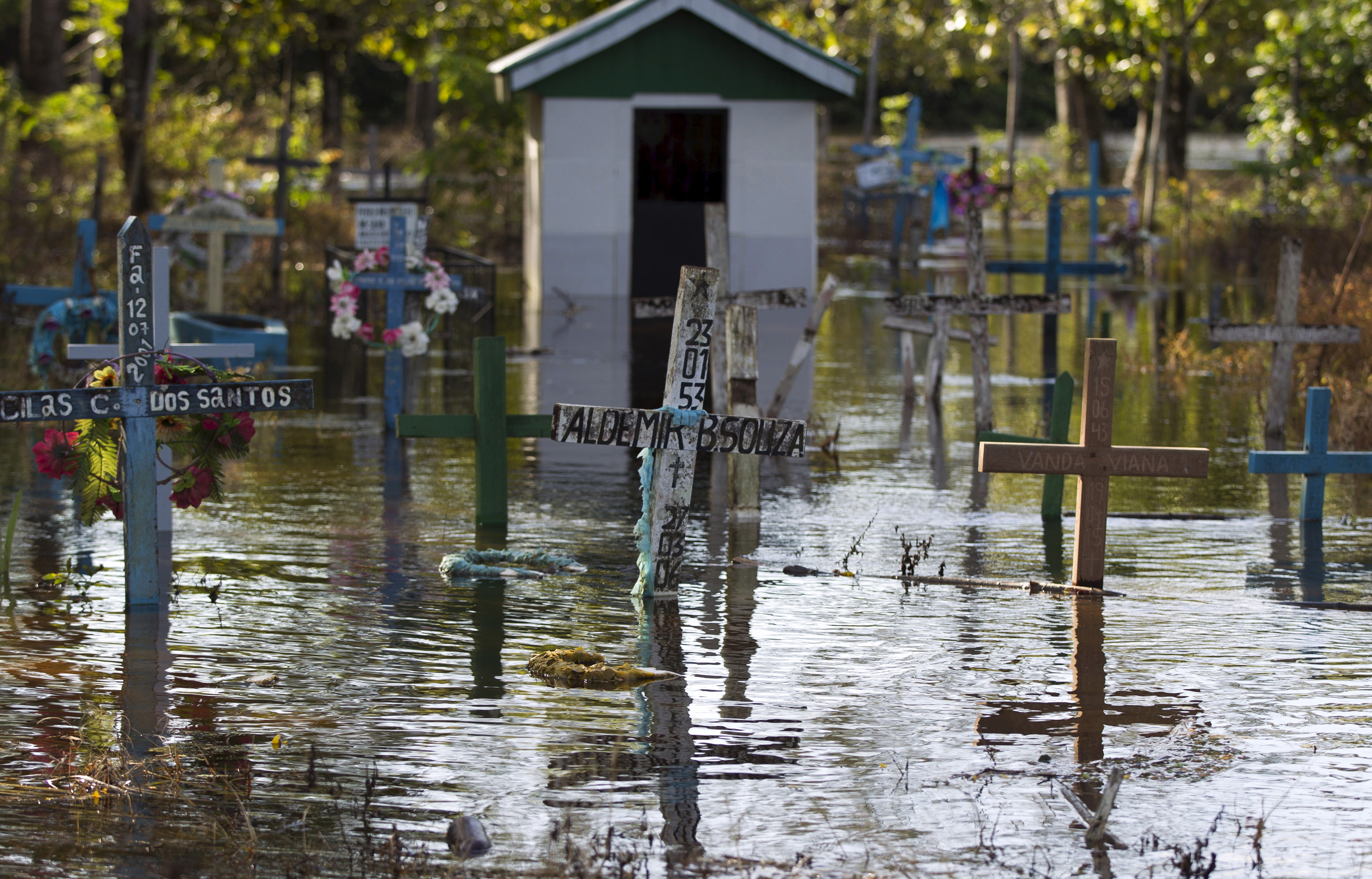 A cemetery is seen flooded by the rising Rio Solimoes, one of the two main branches of the Amazon River, in Anama, Amazonas state, Brazil on June 3, 2015. Photo by Bruno Kelly/Reuters