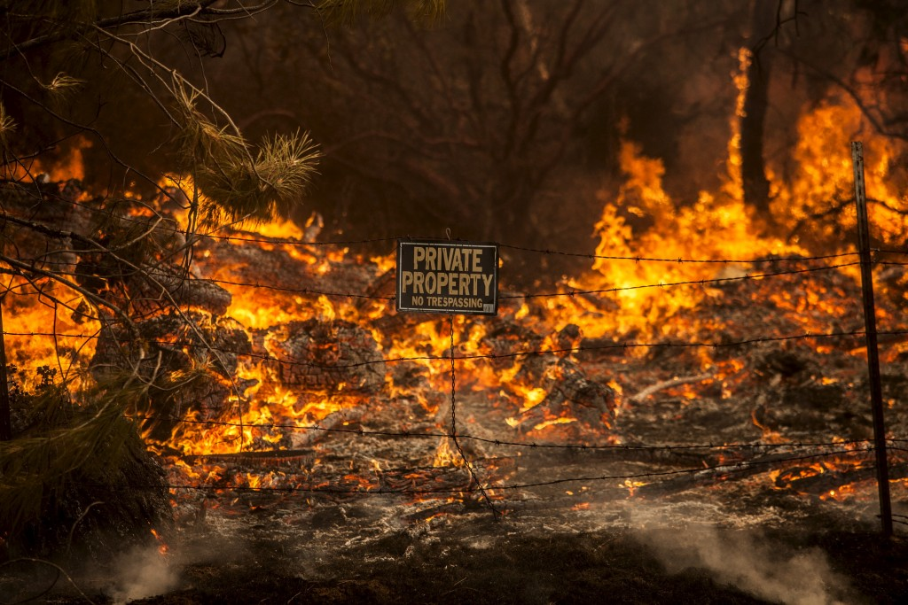 The Rocky Fire burns through a fence line in Lake County, California. Photo by Max Whittaker/Reuters