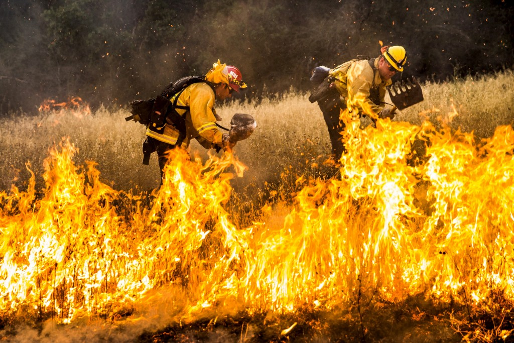 Firefighters work to dig a fire line on the Rocky Fire in Lake County, California July 30, 2015. Photo by Max Whittaker/Reuters