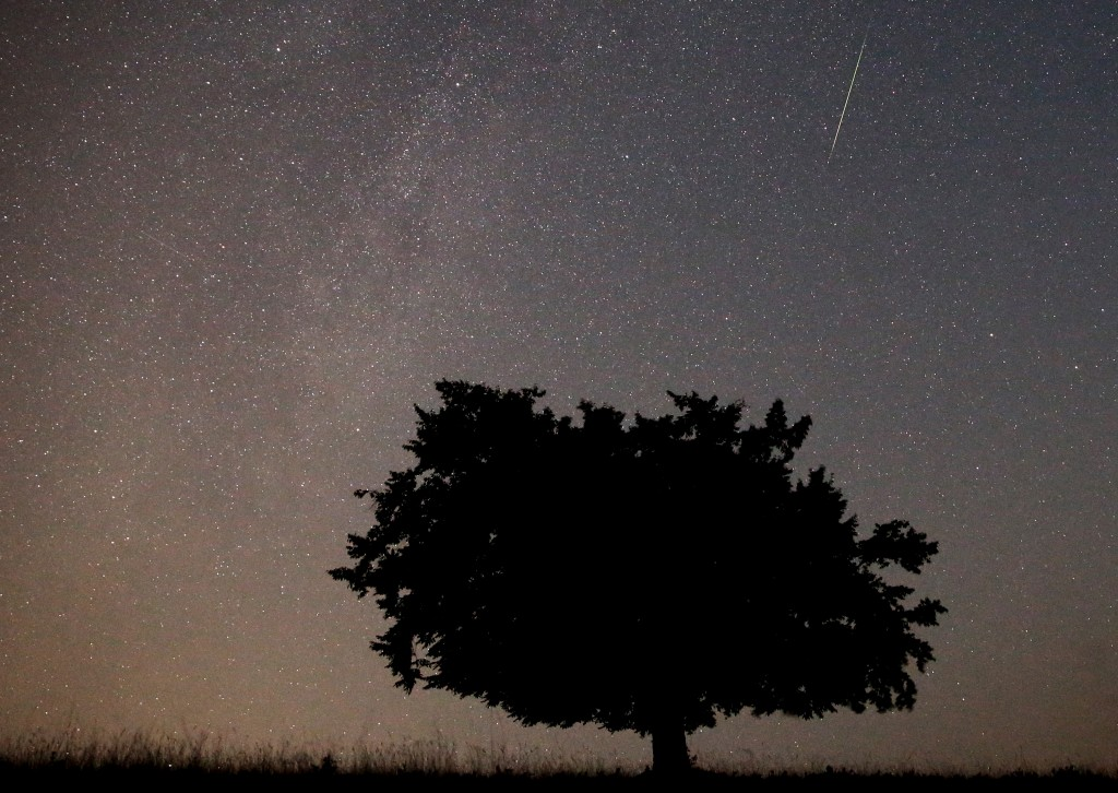 A meteor streaks across the sky during the Perseid meteor shower near Kraljevine on mountain Smetovi in the early morning August 12, 2015. Photo by Dado Ruvic/Reuters