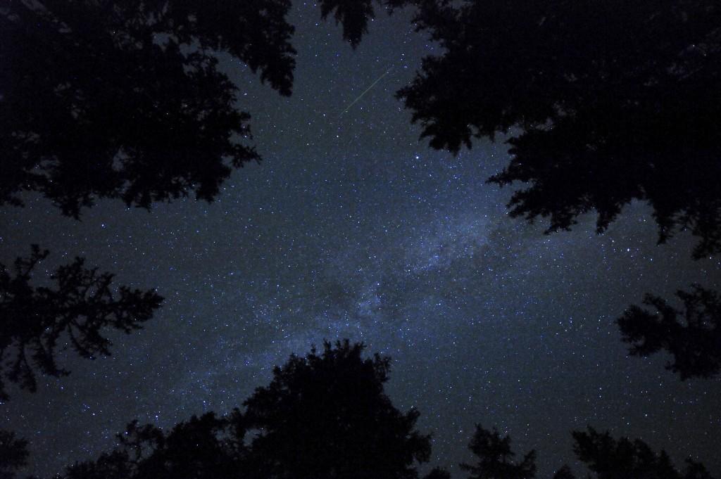 A meteor streaks across the sky during the Perseid meteor shower on Rogla, Slovenia, early August 13, 2015. Photo by Srdjan Zivulovic/Reuters