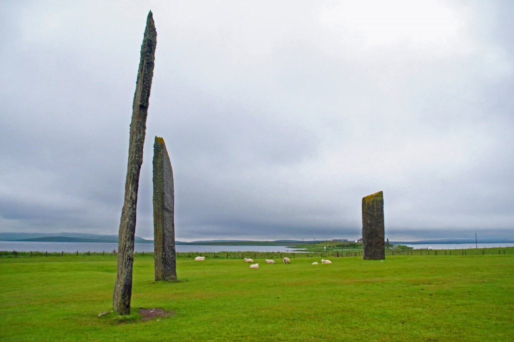 Sheep graze among the Stones of Stenness, one of many Neolithic sites in Orkney. Just beyond the standing stones lies the Ness of Brodgar, a Neolithic complex without parallel in Western Europe. Photo by Lorna Baldwin.