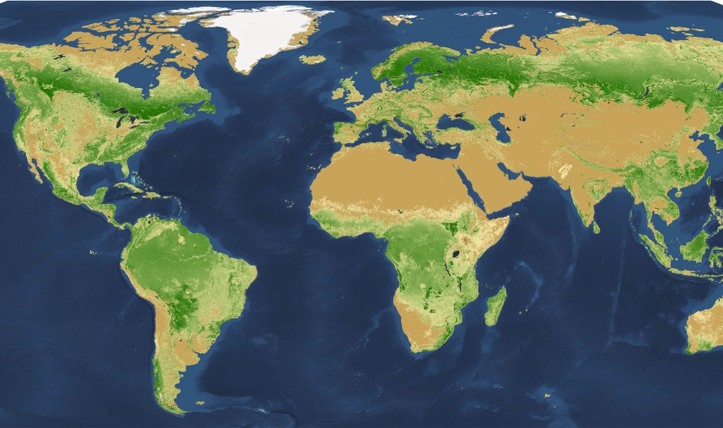 This is the global map of tree density at the square-kilometer pixel scale. Photo by Crowther et al., Nature, 2015.