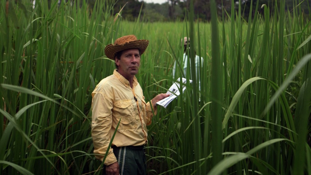 Chris Craft stands among tall stalks of cutgrass at the entrance to SALTEx. Photo by Mike Fritz