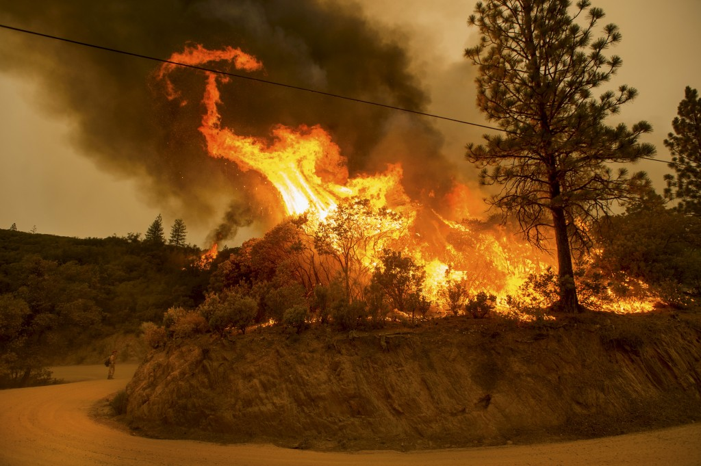 Flames from a backfire burn through dry vegetation as firefighters battle the Butte fire near San Andreas, California September 12, 2015. The Butte fire has destroyed 86 homes and 51 outbuildings in rural Amador and Calaveras counties, where it covers an estimated 65,000 acres (26,305 hectares), officials said. REUTERS/Noah Berger - RTSTYN