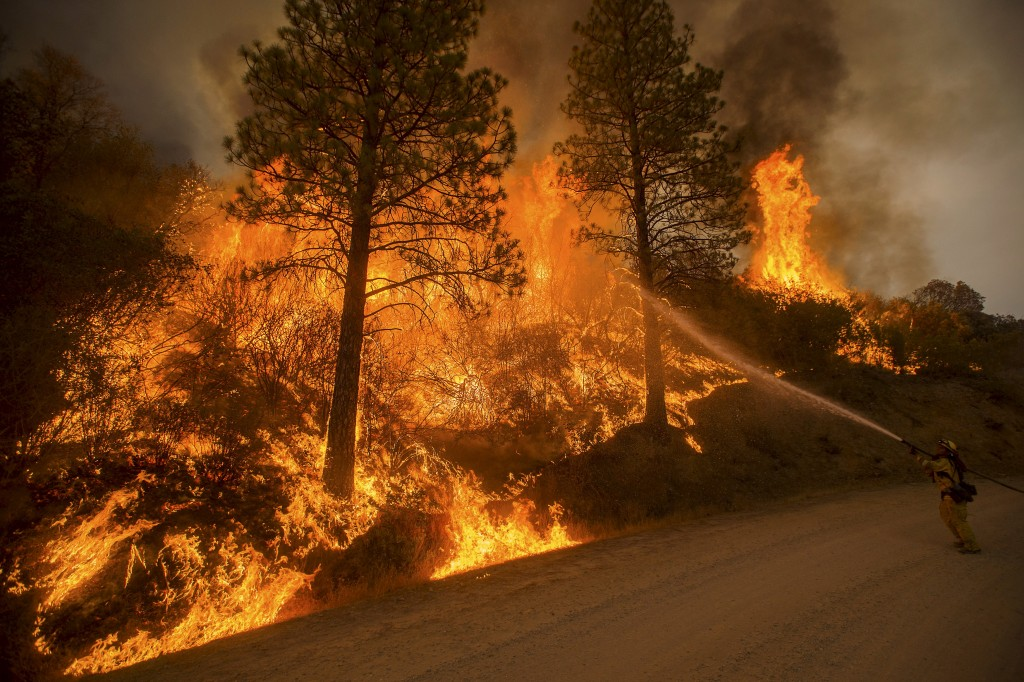 A firefighter sprays water on a backfire while battling the Butte fire near San Andreas, California September 12, 2015. The Butte fire has destroyed 86 homes and 51 outbuildings in rural Amador and Calaveras counties, where it covers an estimated 65,000 acres (26,305 hectares), officials said. REUTERS/Noah Berger - RTSTYT