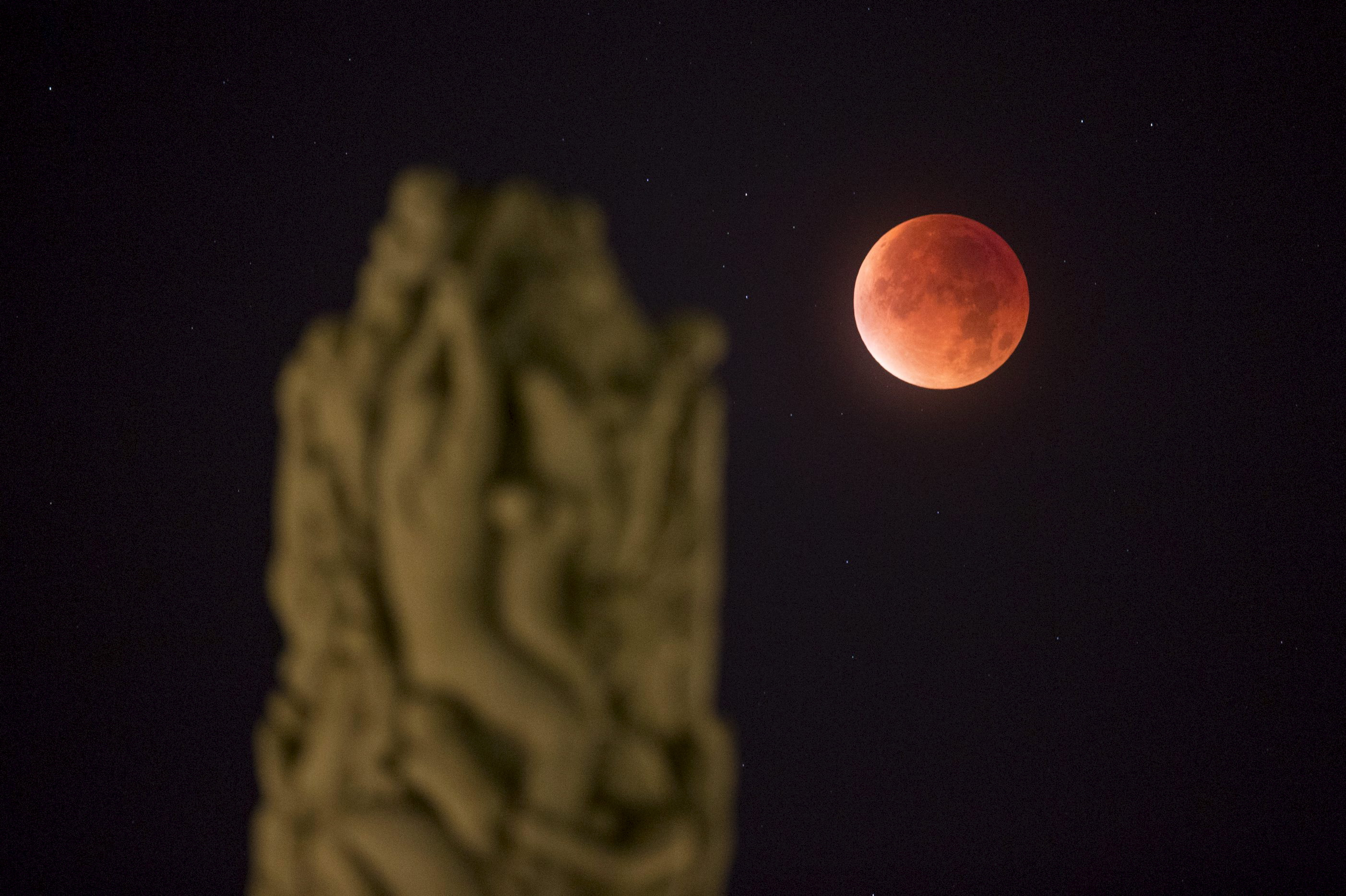 "The total ""supermoon"" eclipse of the closest full moon of the year is seen from Vigeland Park in Oslo, Norway on Sept. 28. Photo by Haakon Mosvold Larsen/NTB Scanpix via Reuters"