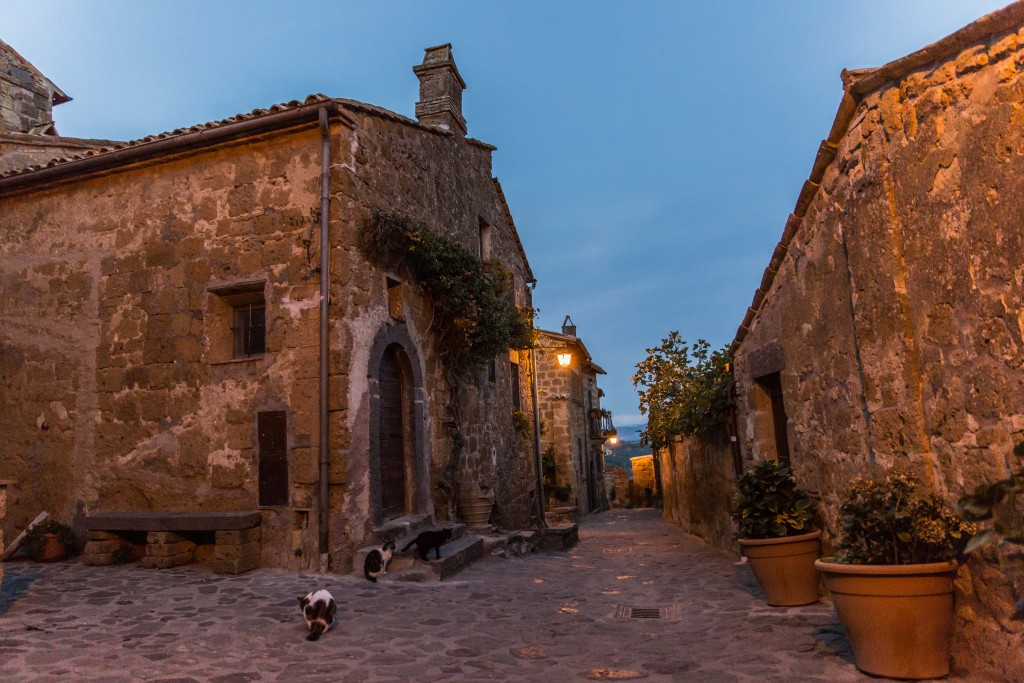 With tourists gone, Civita di Bagnoregio's many cats reclaim the streets. Photo by Frank Carlson
