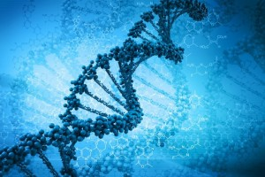 DNA_slideshow
