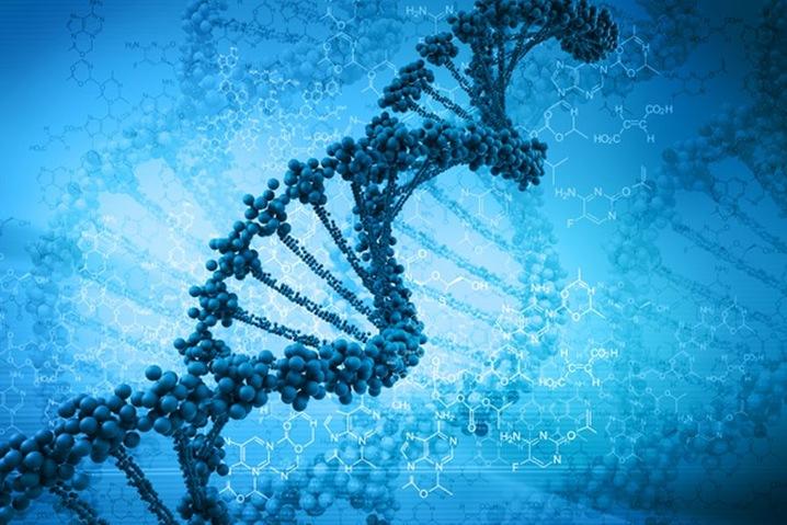 DNA_slideshow
