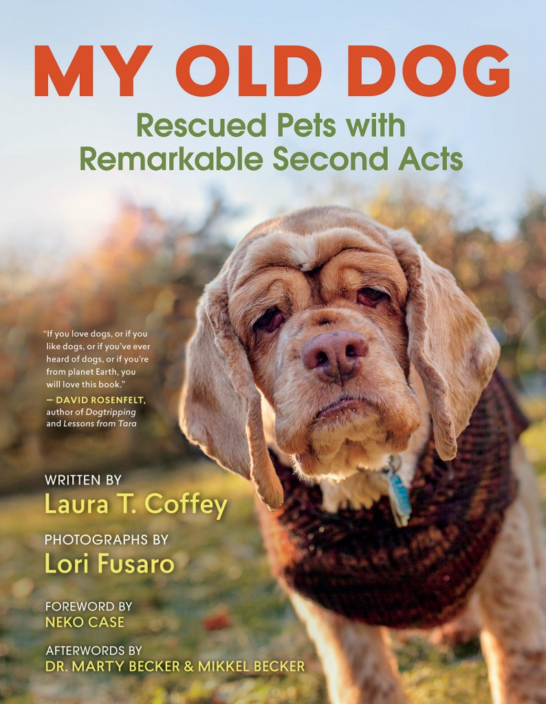 My Dog Skip Book