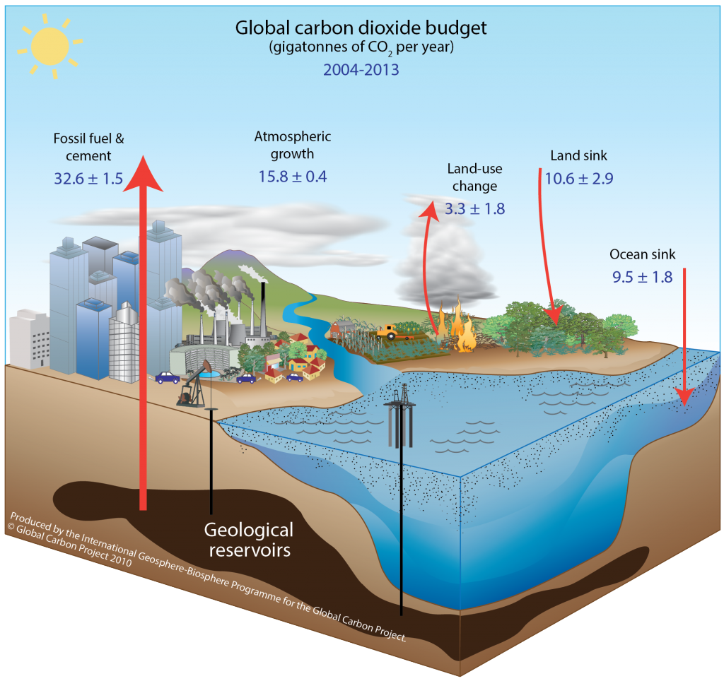 Man-made contributions to the global carbon budget. Illustration by the Global Carbon Project