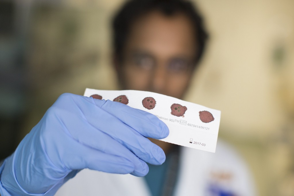 Blood spots for newborn screening. Photo by Pranesh Chakraborty/via Getty Images
