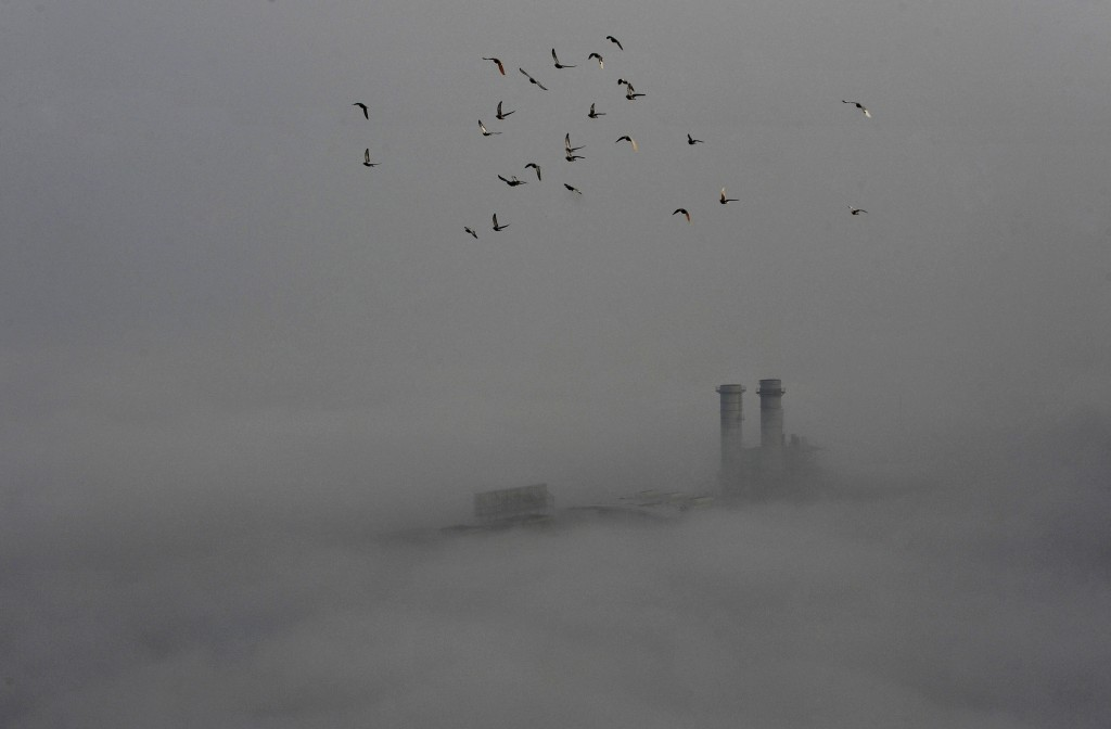 Birds fly across the sky on a polluted day in Wuhan, Hubei province, February 16, 2015. REUTERS/Stringer (CHINA - Tags: ENVIRONMENT ANIMALS TPX IMAGES OF THE DAY) CHINA OUT. NO COMMERCIAL OR EDITORIAL SALES IN CHINA - RTR4PQJ6