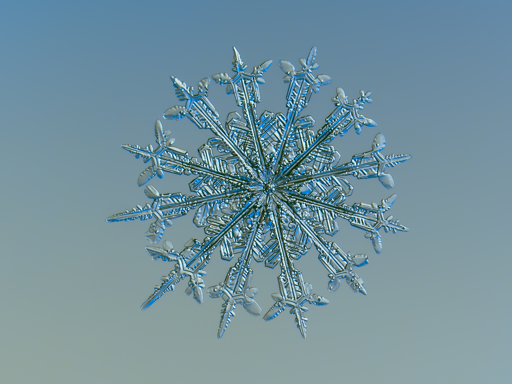 snowflake67-1
