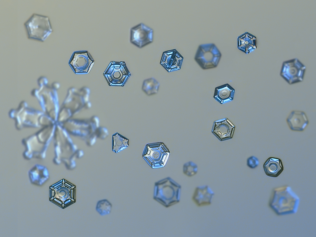 snowflake84