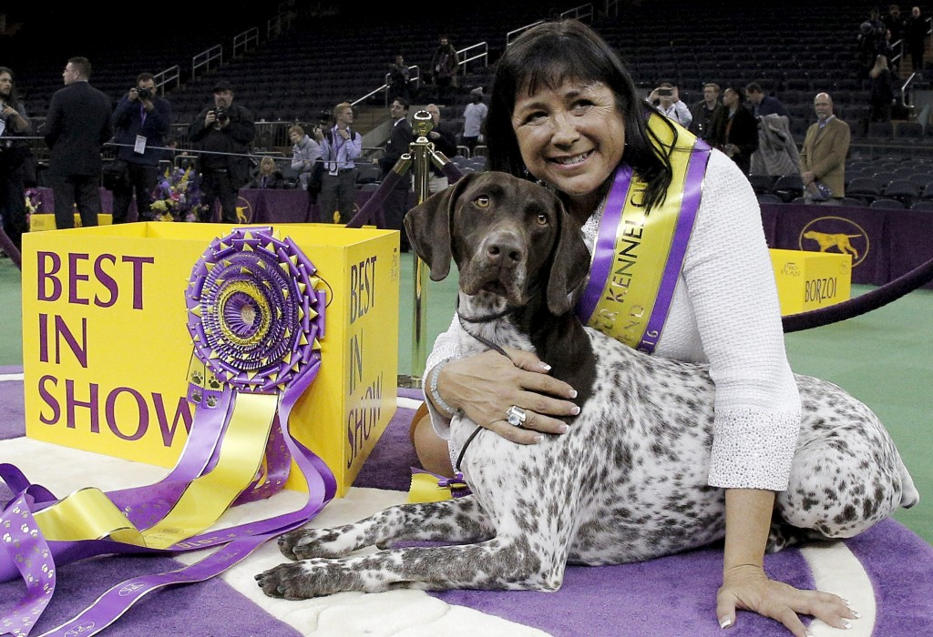 westminster dog show | Tag | PBS NewsHour