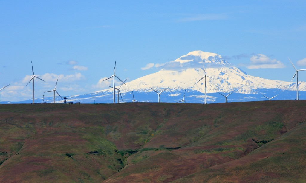Putting a price on carbon could make emissions-free energy sources like these wind turbines in Oregon more competitive.  Photo by Amelia Templeton/OPB/EarthFix