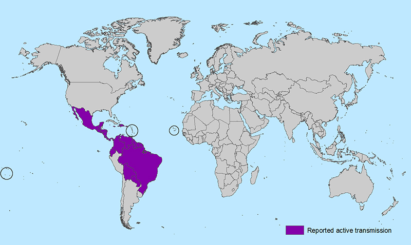 A map from the Centers for Disease Control and Prevention shows the countries where Zika virus is actively transmitted as of Feb. 3, 2016. Brazil has been particularly hard hit.