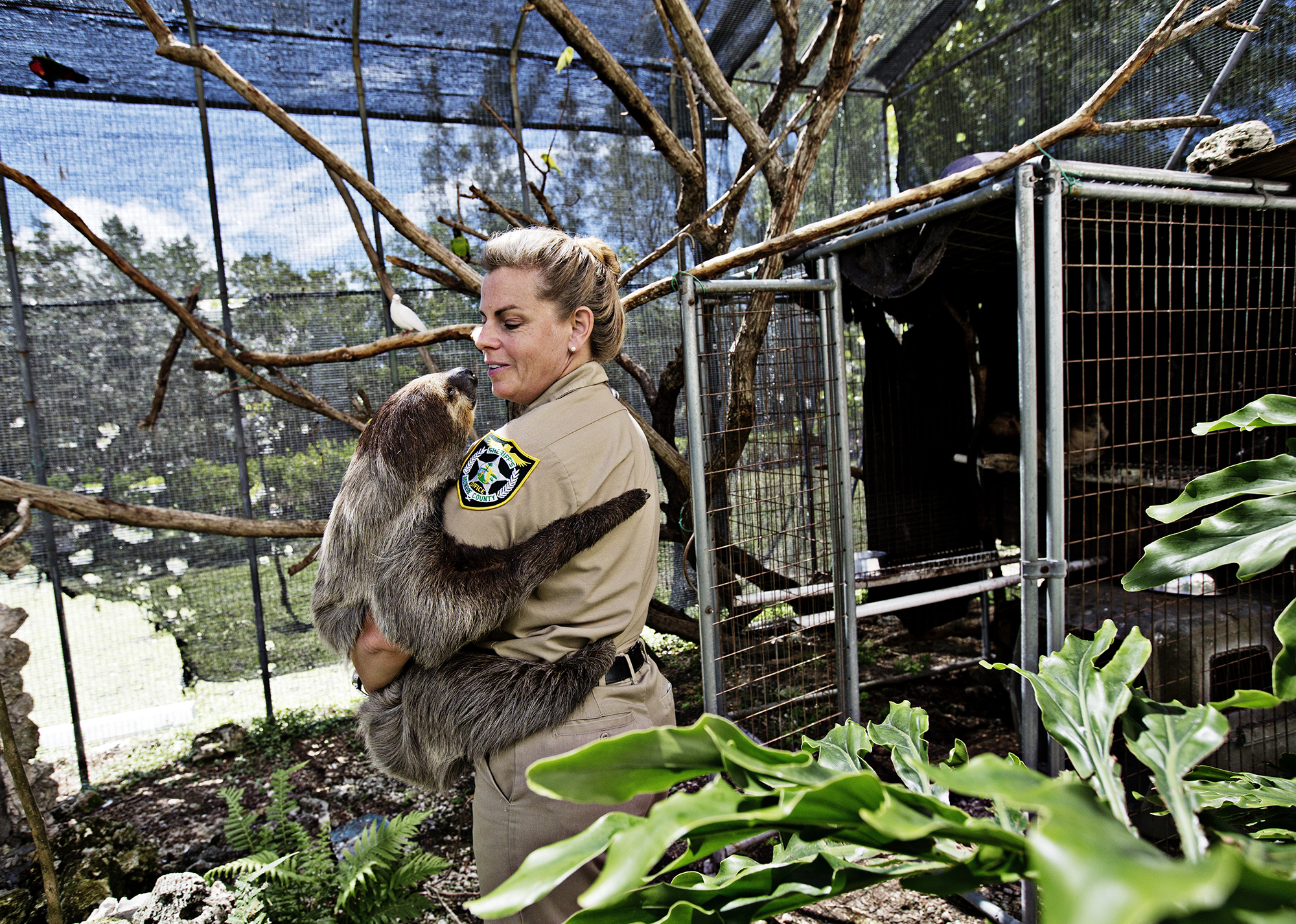 "Curator Jeanne Selander - ""Farmer Jeanne"" - holds ""Mo"" the sloth, the most well known animal at the farm. Selander regularly takes him to community events and stands with him at the entrance during open house days where he meets all the visitors to the farm.    ""I always laugh, they didn't invite me, they invited Mo, I'm just his roadie,"" said Selander says of his appearances up and down the Keys."