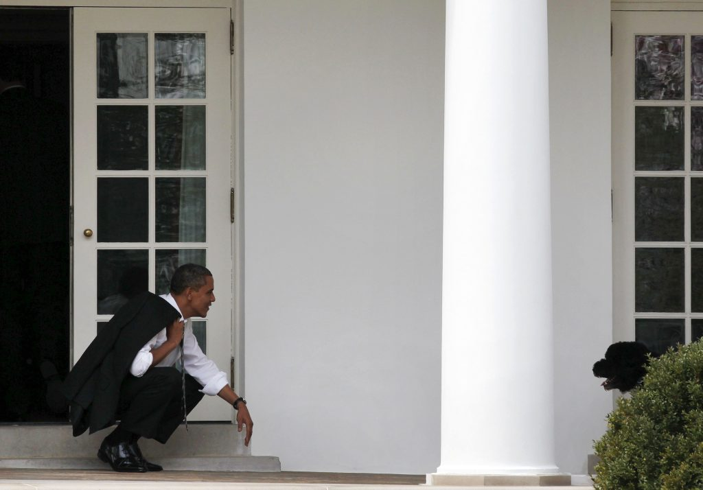 U.S. President Barack Obama bends down to wait for his dog, Bo, to come towards him outside the Oval Office of the White House in Washington March 15, 2012. Photo By Larry Downing via Reuters