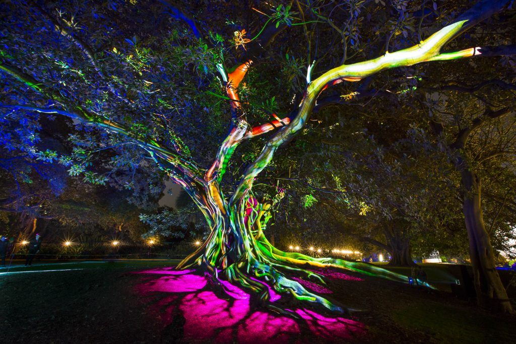 """Synthesis"" appears at the Vivid Sydney Festival. Image courtesy of Vivid Sydney"