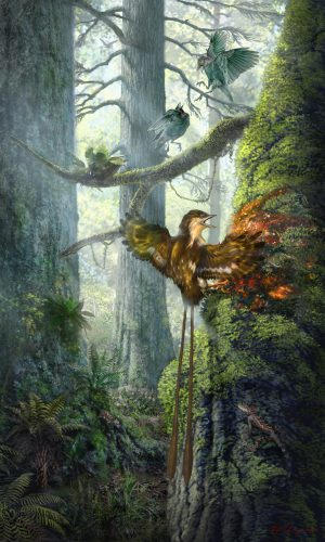 "Depiction of enantiornithine partially ensnared by tree resin, based on the ""angel wing"" specimen. Illustration by Chung-tat Cheung"