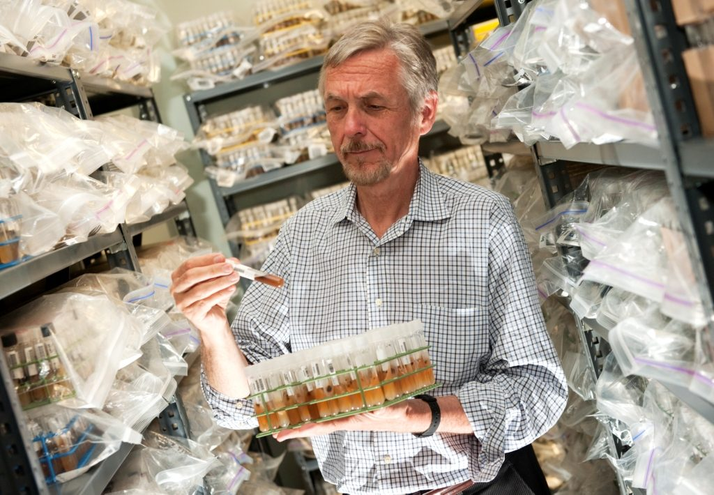 Cedric Pearce stands in his culture room surrounded by a quarter of a million test tubes filled with fungi. Photo by David Wilson/Chris English/UNC Greensboro