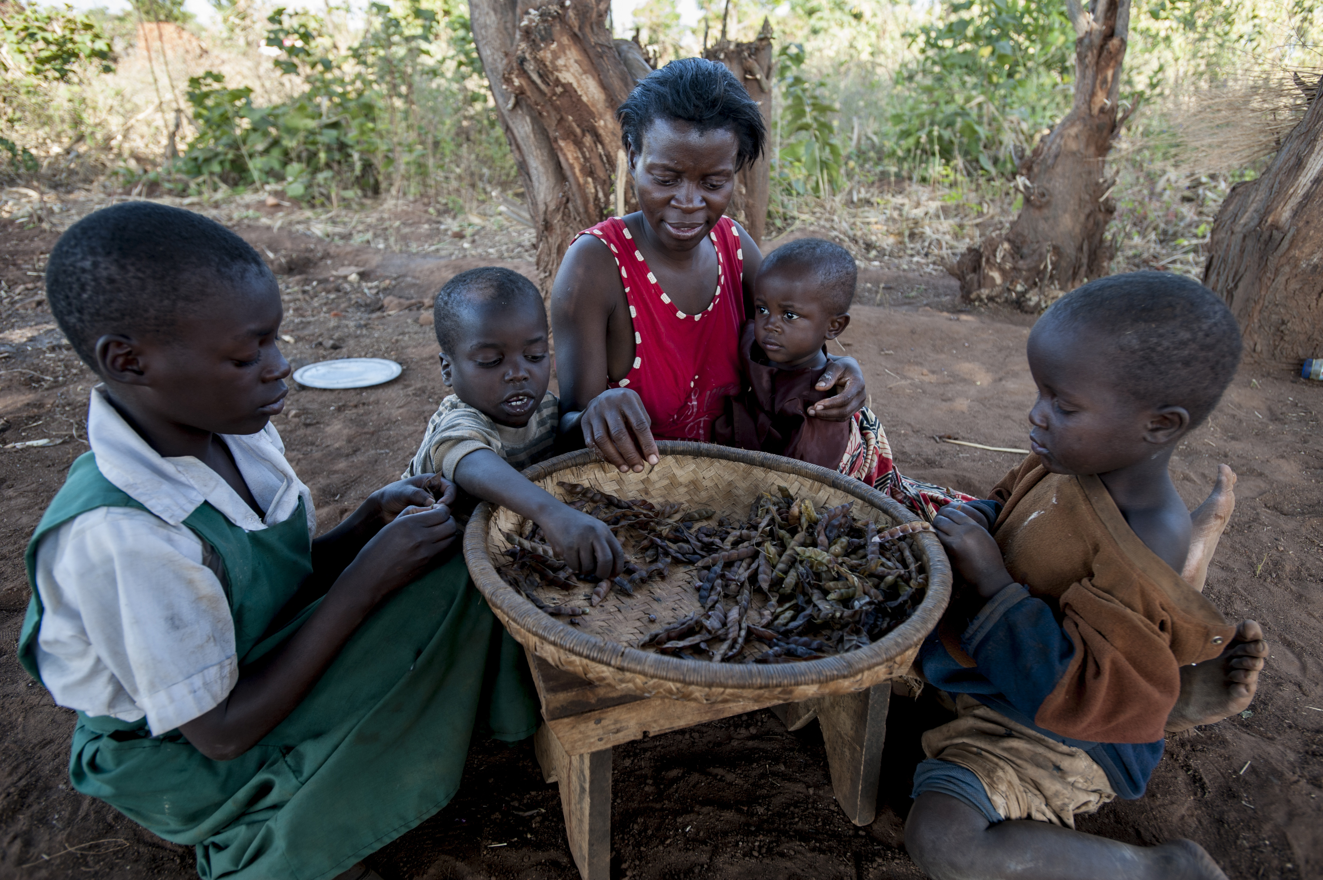 Alinafe (center) and her children eat dried peas amid Malawi's drought. Her oldest daughter (from left) Janet is 10, Kevin is 8, Desire is 2, and Innocent is 6. Photo by Sebastian Rich for UNICEF